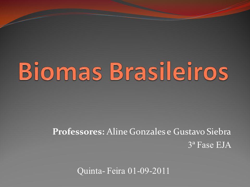 Professores: Aline Gonzales e Gustavo Siebra 3ª Fase EJA Quinta- Feira 01-09-2011