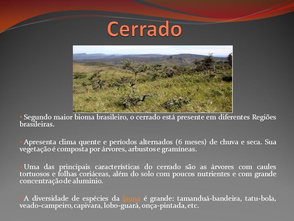 Segundo maior bioma brasileiro, o cerrado está presente em diferentes Regiões brasileiras. Apresenta clima quente e períodos alternados (6 meses) de c