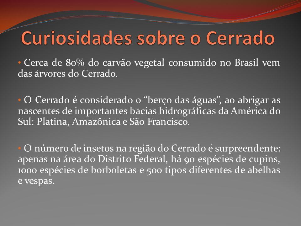 Cerca de 80% do carvão vegetal consumido no Brasil vem das árvores do Cerrado. O Cerrado é considerado o berço das águas, ao abrigar as nascentes de i