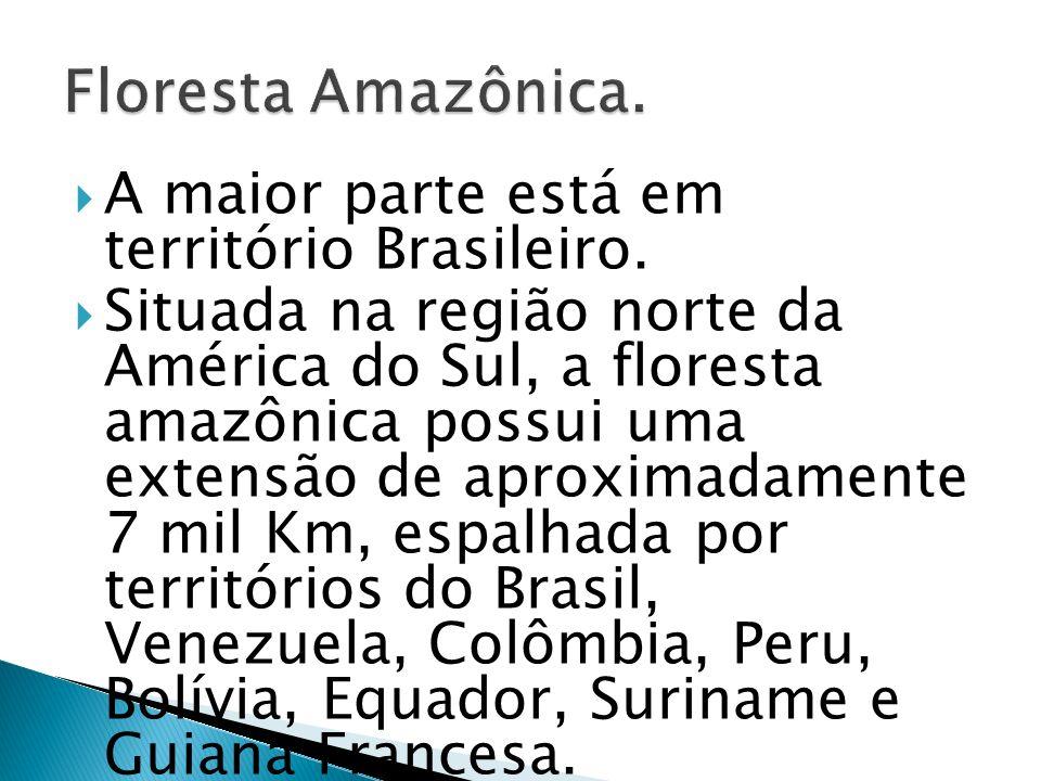 A maior parte está em território Brasileiro. Situada na região norte da América do Sul, a floresta amazônica possui uma extensão de aproximadamente 7
