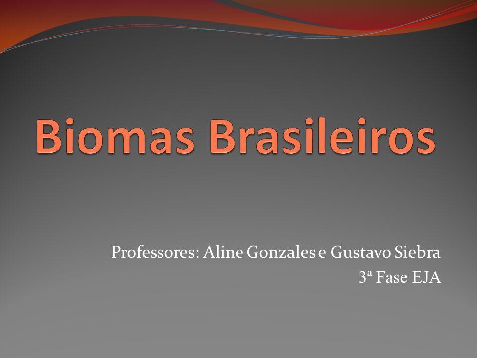 Professores: Aline Gonzales e Gustavo Siebra 3ª Fase EJA