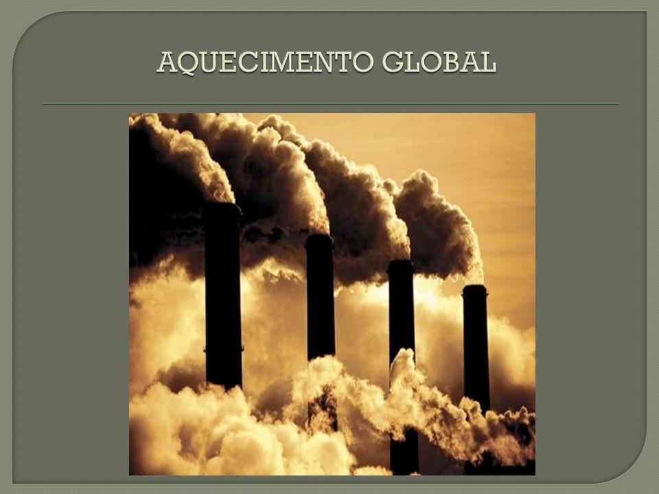 Todos os dias acompanhamos na televisão, nos jornais e revistas as catástrofes climáticas e as mudanças que estão ocorrendo, rapidamente, no clima mundial.