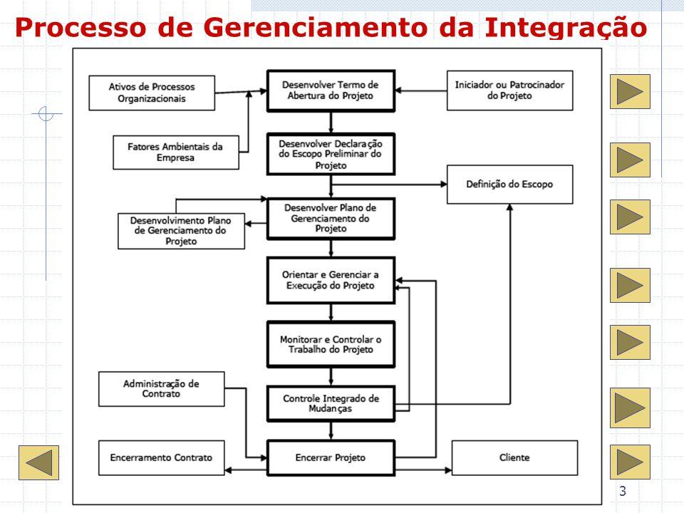 3 Processo de Gerenciamento da Integração