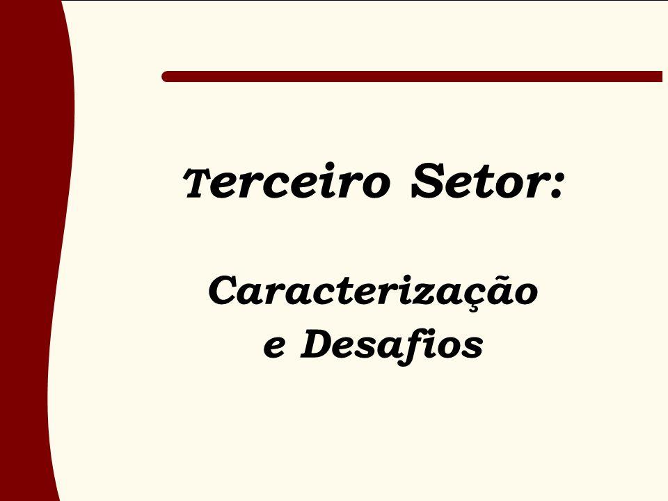 T erceiro Setor: Caracterização e Desafios
