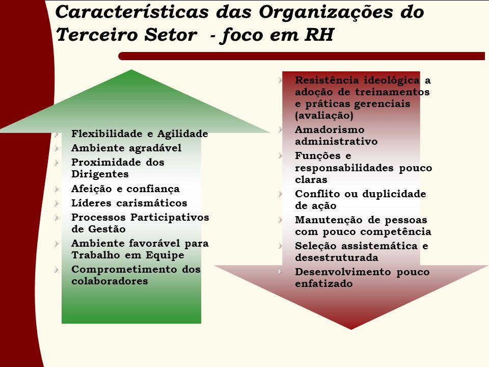 Características das Organizações do Terceiro Setor - foco em RH Flexibilidade e Agilidade Ambiente agradável Proximidade dos Dirigentes Afeição e conf