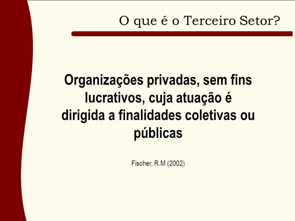 Organizações privadas, sem fins lucrativos, cuja atuação é dirigida a finalidades coletivas ou públicas Fischer, R.M (2002)