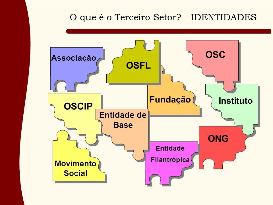 O que é o Terceiro Setor? - IDENTIDADES Associação Entidade de Base OSC OSFL Fundação Movimento Social OSCIP Entidade Filantrópica Instituto ONG