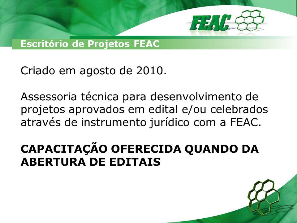 Escritório de Projetos FEAC Criado em agosto de 2010. Assessoria técnica para desenvolvimento de projetos aprovados em edital e/ou celebrados através