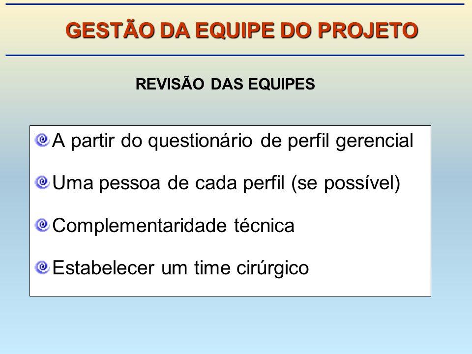 A partir do questionário de perfil gerencial Uma pessoa de cada perfil (se possível) Complementaridade técnica Estabelecer um time cirúrgico REVISÃO DAS EQUIPES GESTÃO DA EQUIPE DO PROJETO