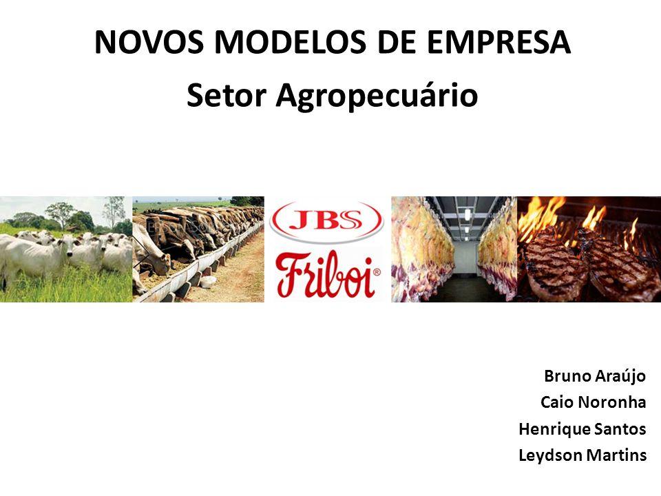 NOVOS MODELOS DE EMPRESA Setor Agropecuário Bruno Araújo Caio Noronha Henrique Santos Leydson Martins