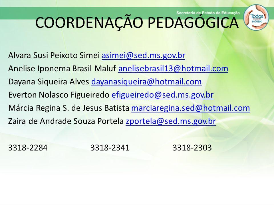 COORDENAÇÃO PEDAGÓGICA Alvara Susi Peixoto Simei asimei@sed.ms.gov.brasimei@sed.ms.gov.br Anelise Iponema Brasil Maluf anelisebrasil13@hotmail.comanel