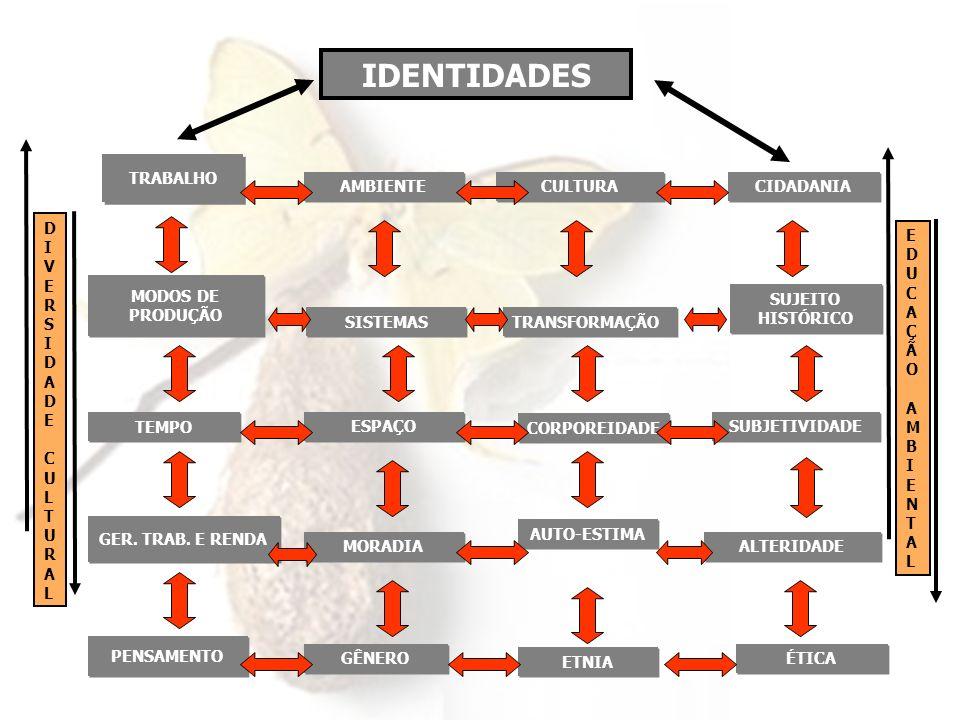 DIVERSIDADECULTURALDIVERSIDADECULTURAL IDENTIDADES EDUCAÇÃOAMBIENTALEDUCAÇÃOAMBIENTAL CIDADANIA TRABALHO AMBIENTE CULTURA SUJEITO HISTÓRICO MODOS DE P