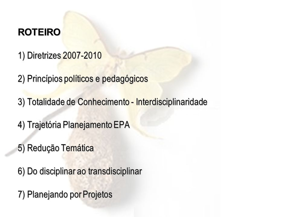 ROTEIRO 1) Diretrizes 2007-2010 2) Princípios políticos e pedagógicos 3) Totalidade de Conhecimento - Interdisciplinaridade 4) Trajetória Planejamento
