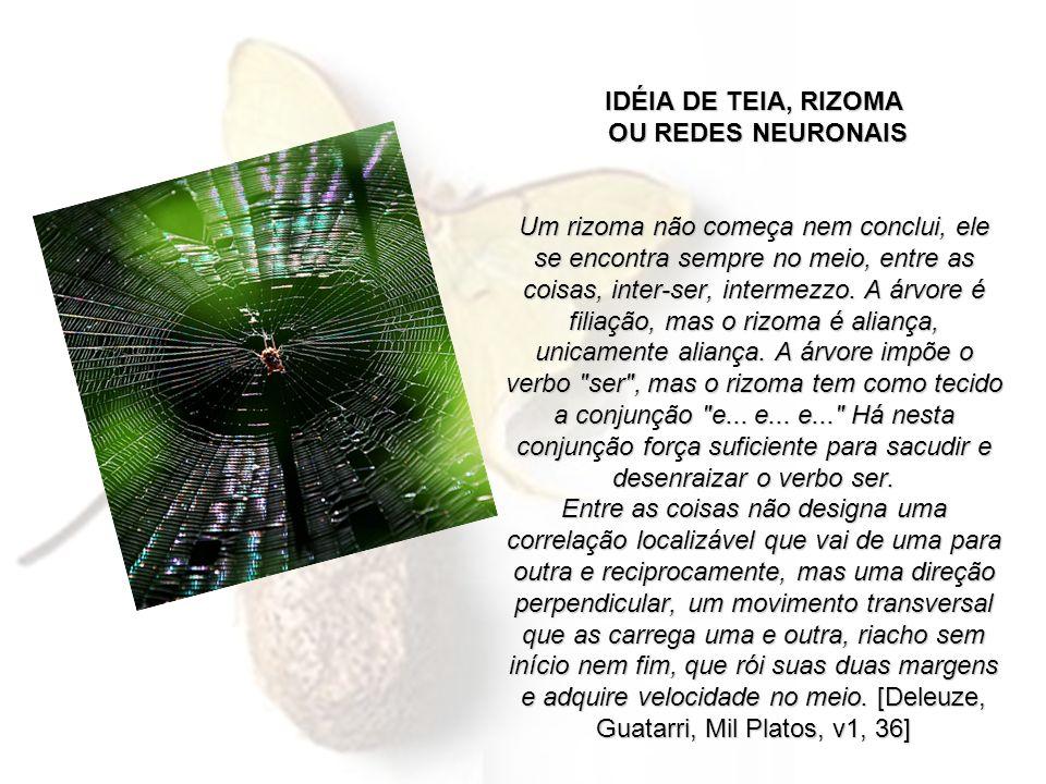 IDÉIA DE TEIA, RIZOMA OU REDES NEURONAIS Um rizoma não começa nem conclui, ele se encontra sempre no meio, entre as coisas, inter-ser, intermezzo. A á