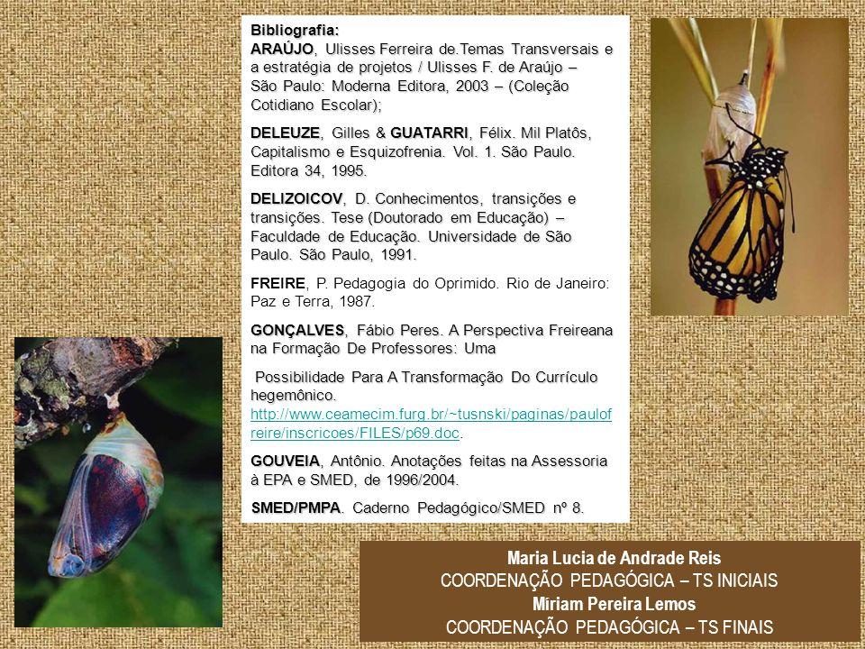 Bibliografia: ARAÚJO, Ulisses Ferreira de.Temas Transversais e a estratégia de projetos / Ulisses F. de Araújo – São Paulo: Moderna Editora, 2003 – (C