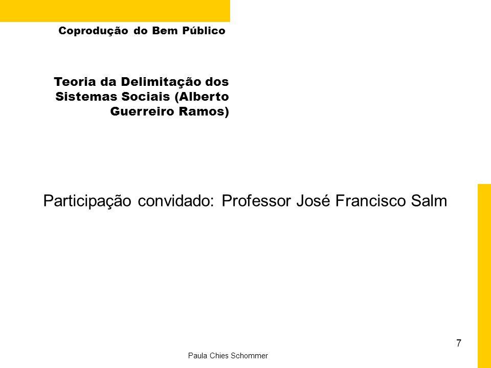 Participação convidado: Professor José Francisco Salm 7 Paula Chies Schommer Coprodução do Bem Público Teoria da Delimitação dos Sistemas Sociais (Alb