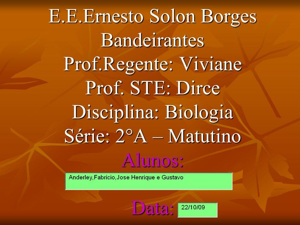 E.E.Ernesto Solon Borges Bandeirantes Prof.Regente: Viviane Prof. STE: Dirce Disciplina: Biologia Série: 2°A – Matutino Alunos: Data: