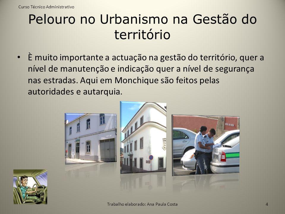 Pelouro no Urbanismo na Gestão do território È muito importante a actuação na gestão do território, quer a nível de manutenção e indicação quer a níve
