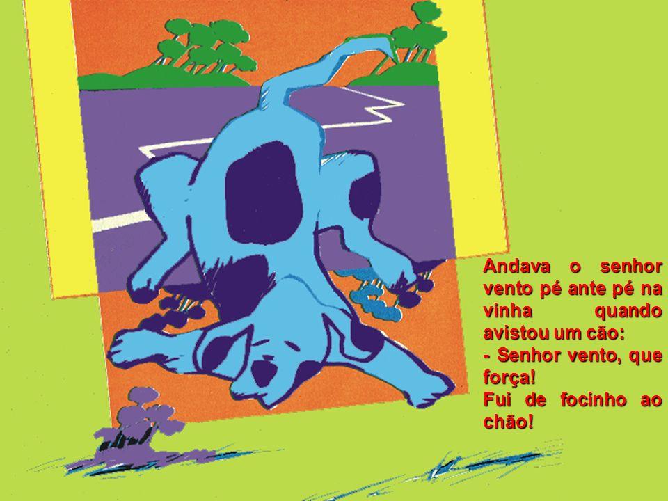 Andava o senhor vento pé ante pé na vinha quando avistou um cão: - Senhor vento, que força.