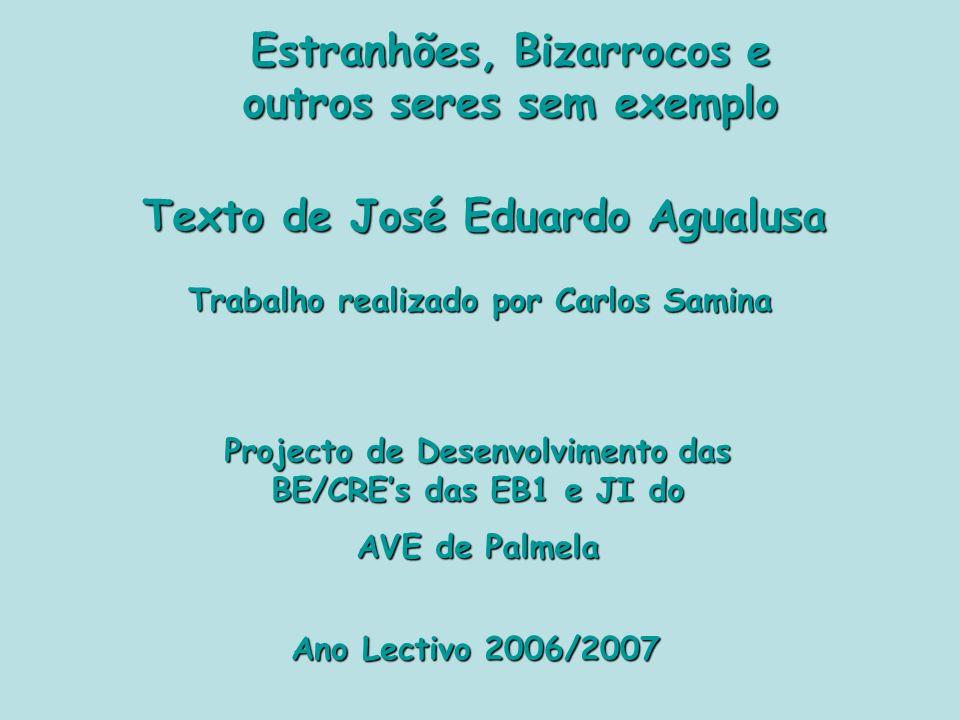 Estranhões, Bizarrocos e outros seres sem exemplo Texto de José Eduardo Agualusa Trabalho realizado por Carlos Samina Ano Lectivo 2006/2007 Projecto de Desenvolvimento das BE/CREs das EB1 e JI do AVE de Palmela