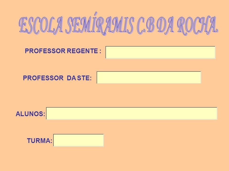 ALUNOS: PROFESSOR REGENTE : PROFESSOR DA STE: TURMA: