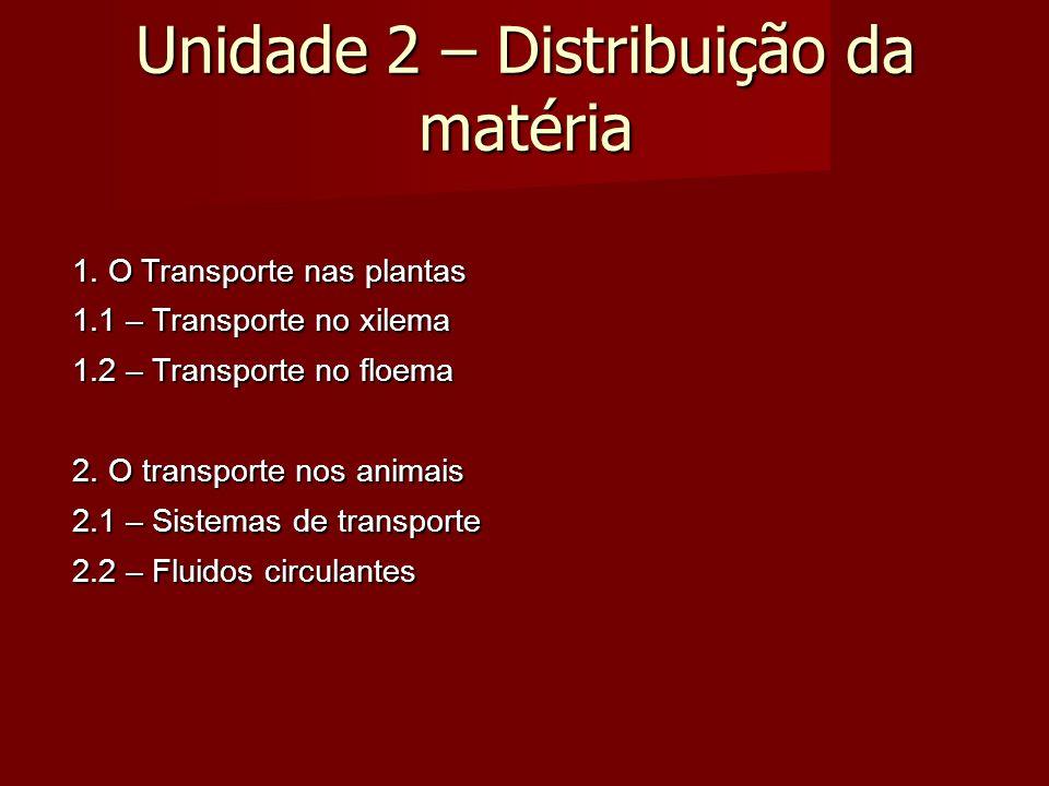 Unidade 2 – Distribuição da matéria 1.
