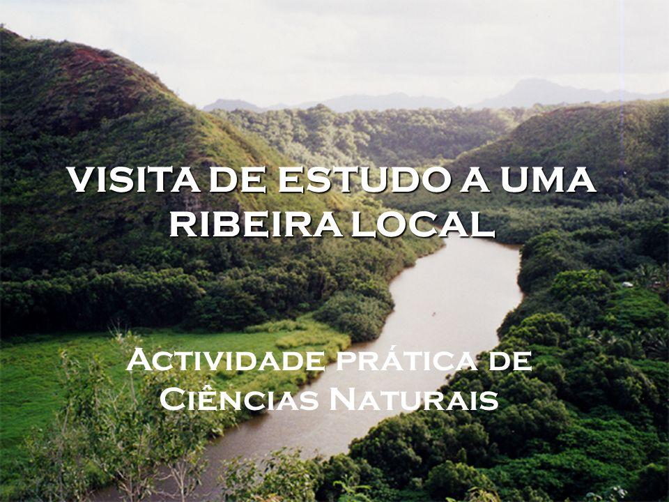 VISITA DE ESTUDO A UMA RIBEIRA LOCAL Actividade prática de Ciências Naturais