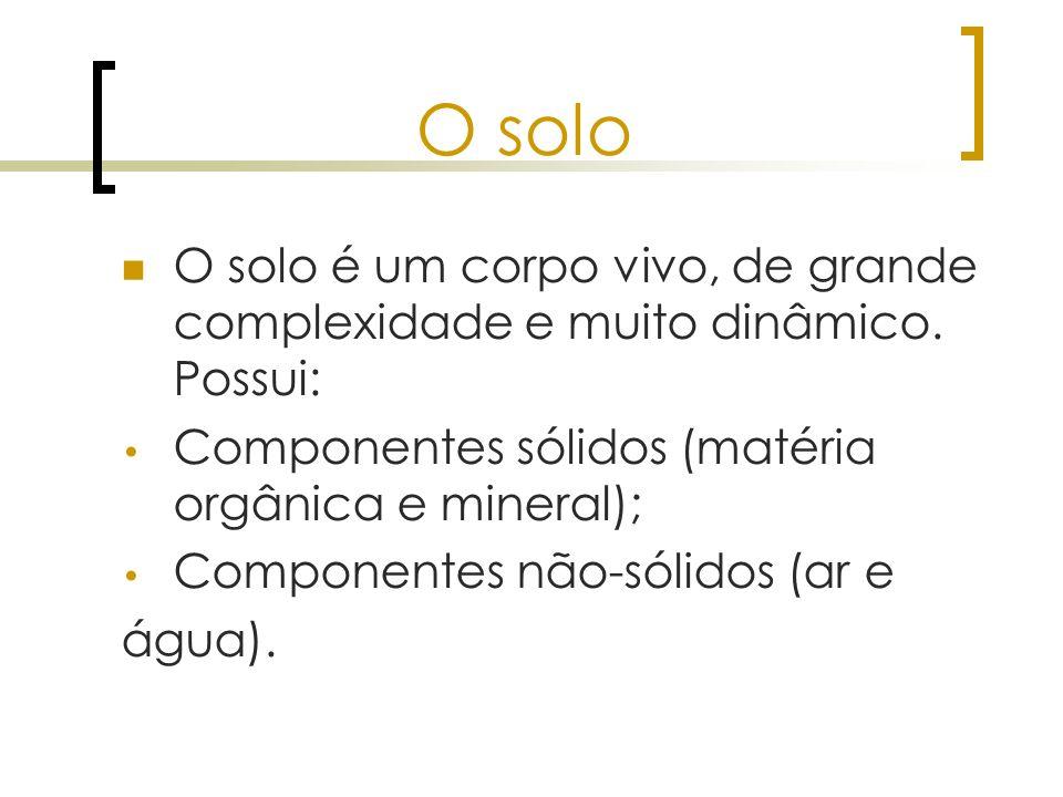 O solo O solo é um corpo vivo, de grande complexidade e muito dinâmico. Possui: Componentes sólidos (matéria orgânica e mineral); Componentes não-sóli