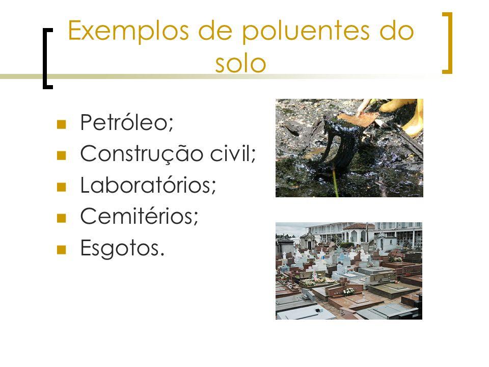 Exemplos de poluentes do solo Petróleo; Construção civil; Laboratórios; Cemitérios; Esgotos.