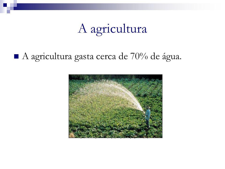 A agricultura A agricultura gasta cerca de 70% de água. a