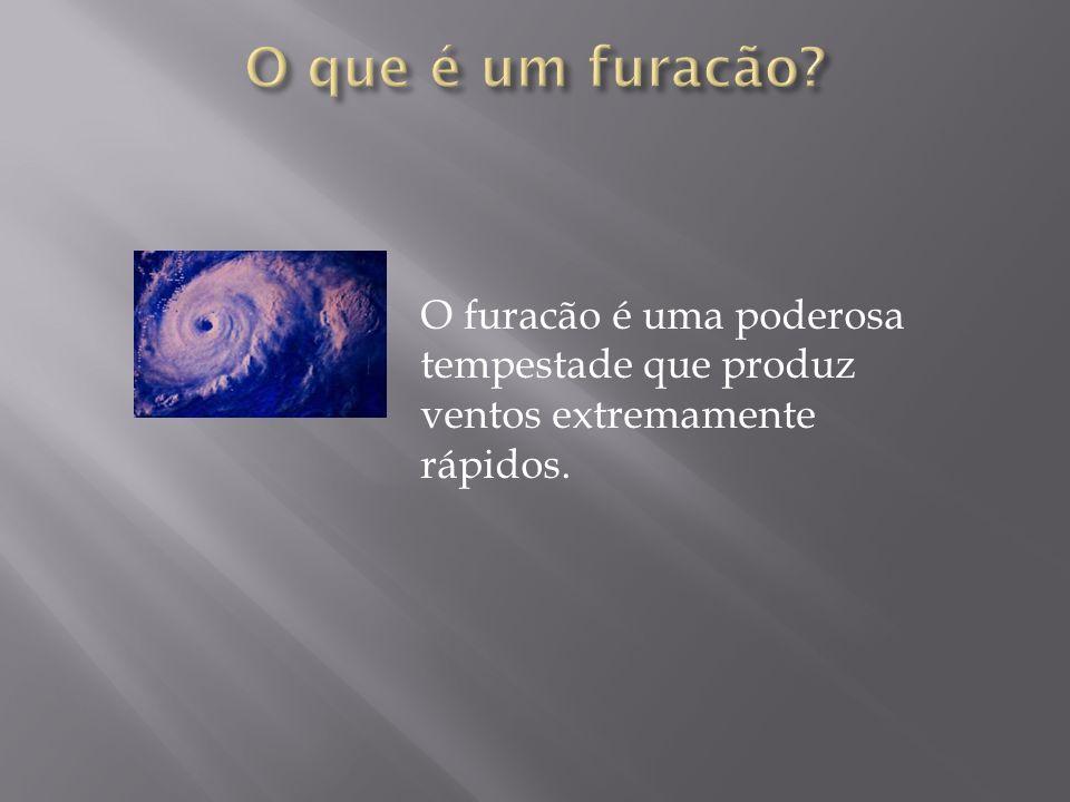 O furacão é uma poderosa tempestade que produz ventos extremamente rápidos.