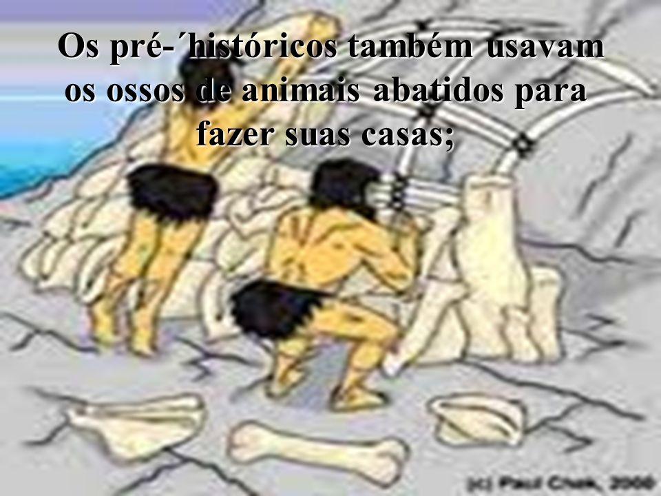 Os pré-´históricos também usavam os ossos de animais abatidos para fazer suas casas; Os pré-´históricos também usavam os ossos de animais abatidos par