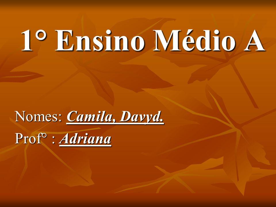 1° Ensino Médio A 1° Ensino Médio A Nomes: Camila, Davyd. Prof° : Adriana