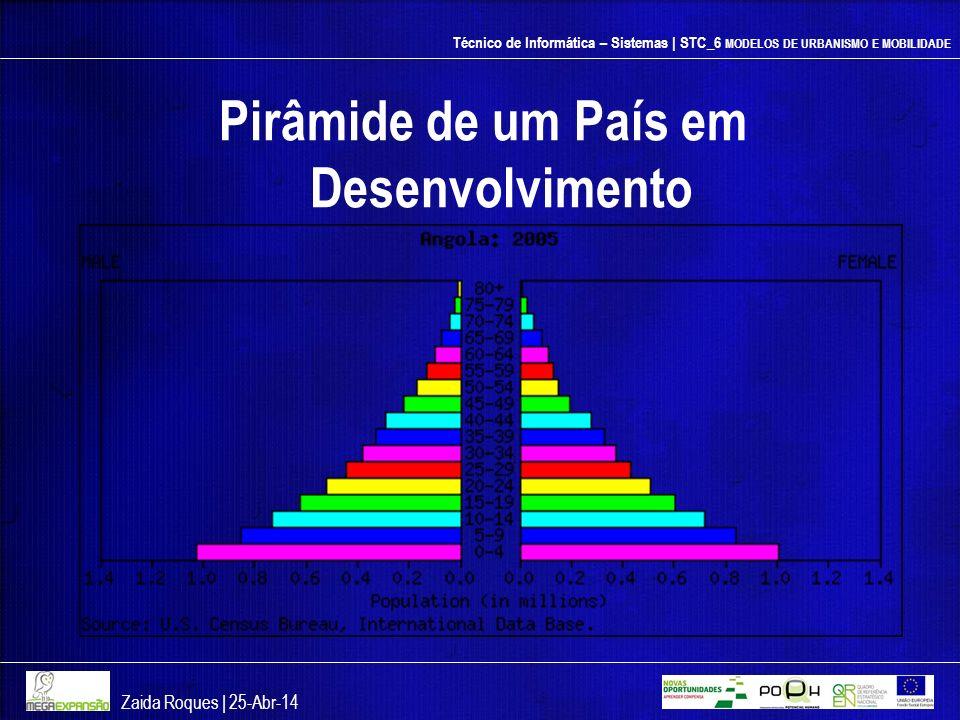 Técnico de Informática – Sistemas | STC_6 MODELOS DE URBANISMO E MOBILIDADE Pirâmide de um País em Desenvolvimento Zaida Roques | 25-Abr-14