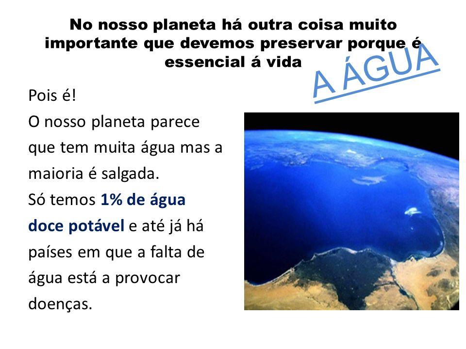 No nosso planeta há outra coisa muito importante que devemos preservar porque é essencial á vida Pois é! O nosso planeta parece que tem muita água mas