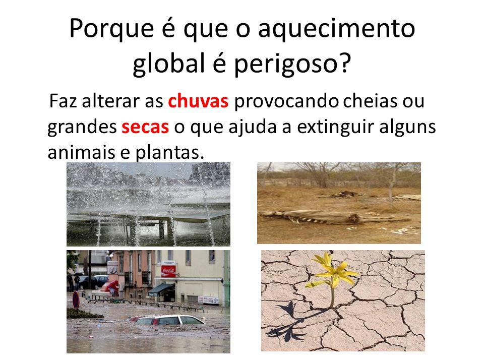 Porque é que o aquecimento global é perigoso? Faz alterar as chuvas provocando cheias ou grandes secas o que ajuda a extinguir alguns animais e planta
