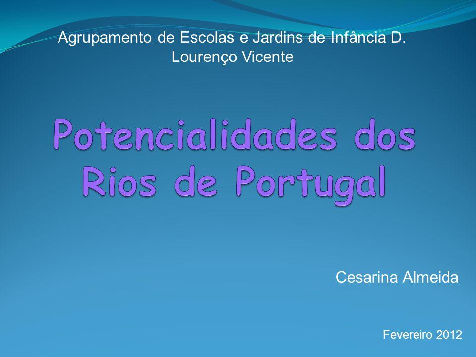 Agrupamento de Escolas e Jardins de Infância D. Lourenço Vicente Cesarina Almeida Fevereiro 2012