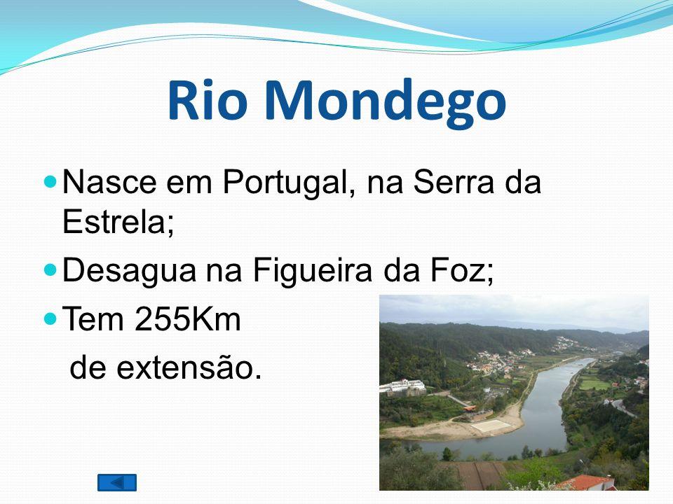 Rio Mondego Nasce em Portugal, na Serra da Estrela; Desagua na Figueira da Foz; Tem 255Km de extensão.