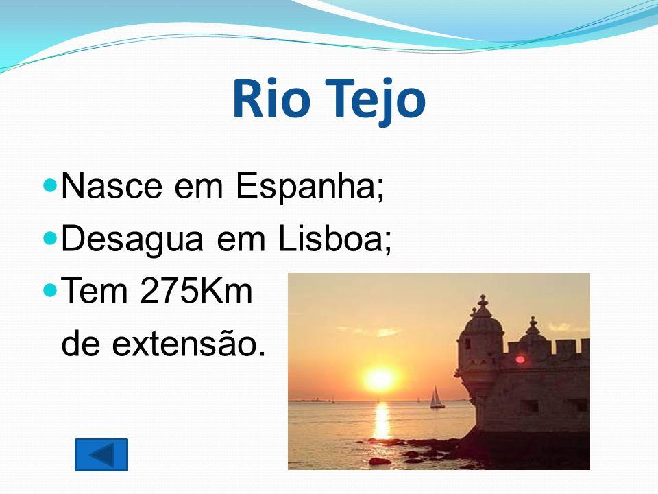 Rio Tejo Nasce em Espanha; Desagua em Lisboa; Tem 275Km de extensão.
