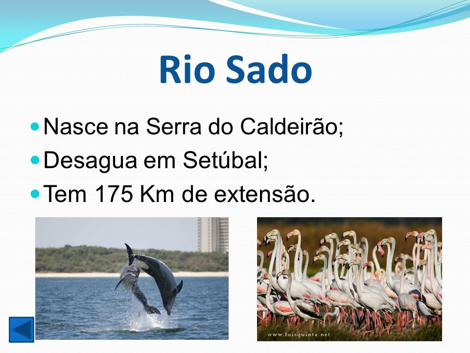 Rio Sado Nasce na Serra do Caldeirão; Desagua em Setúbal; Tem 175 Km de extensão.