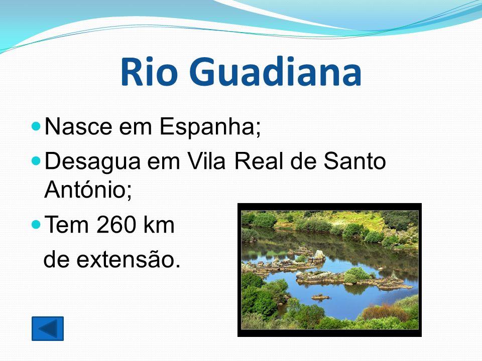 Rio Guadiana Nasce em Espanha; Desagua em Vila Real de Santo António; Tem 260 km de extensão.