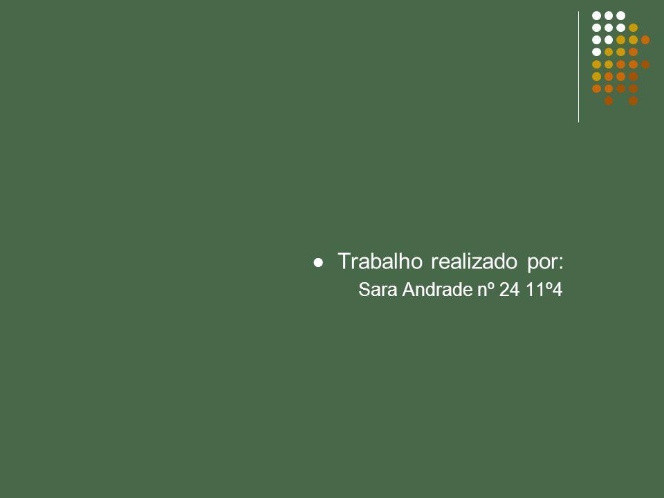 Trabalho realizado por: Sara Andrade nº 24 11º4