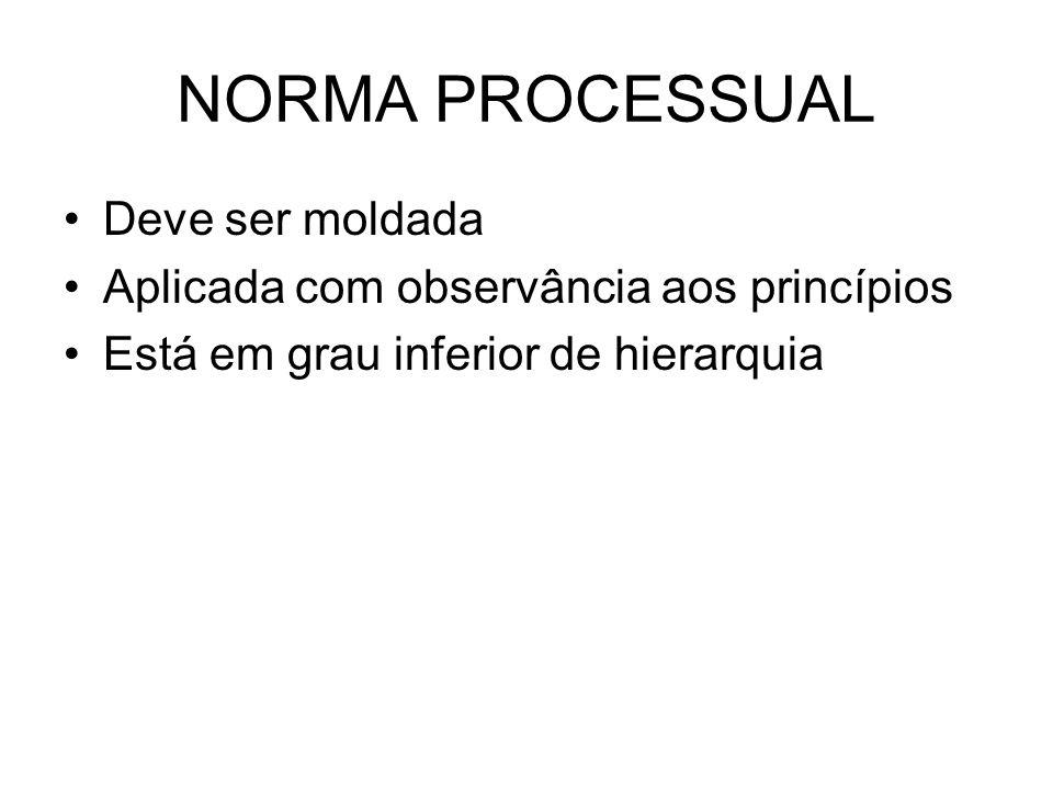 NORMA PROCESSUAL Deve ser moldada Aplicada com observância aos princípios Está em grau inferior de hierarquia