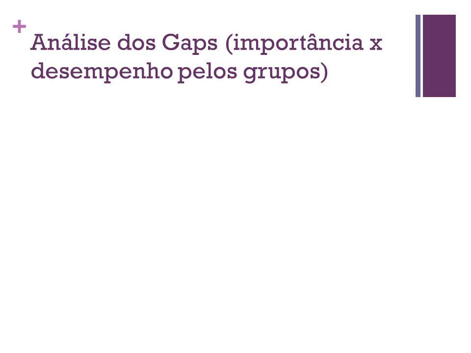 + Análise dos Gaps (importância x desempenho pelos grupos)