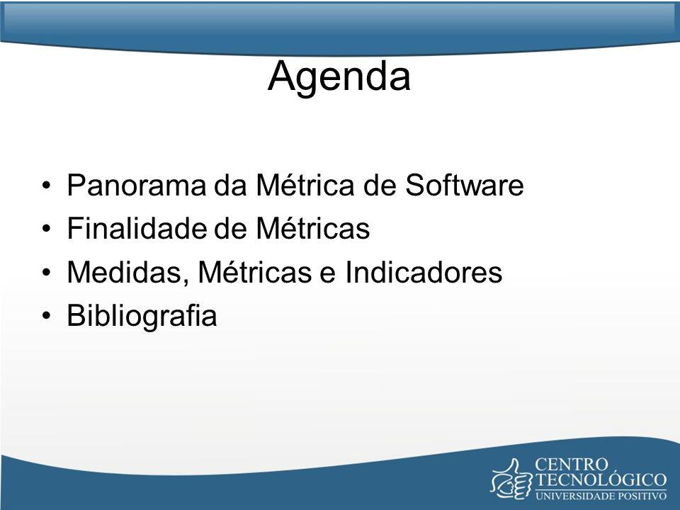 Agenda Panorama da Métrica de Software Finalidade de Métricas Medidas, Métricas e Indicadores Bibliografia