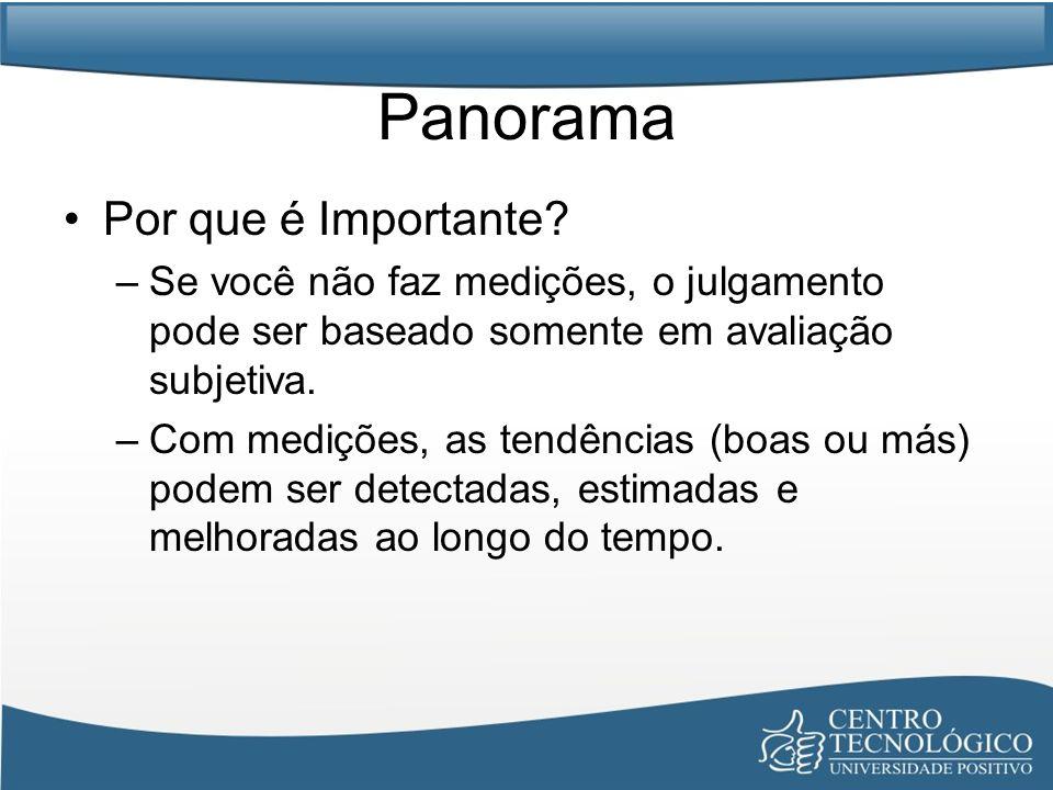 Panorama Por que é Importante? –Se você não faz medições, o julgamento pode ser baseado somente em avaliação subjetiva. –Com medições, as tendências (