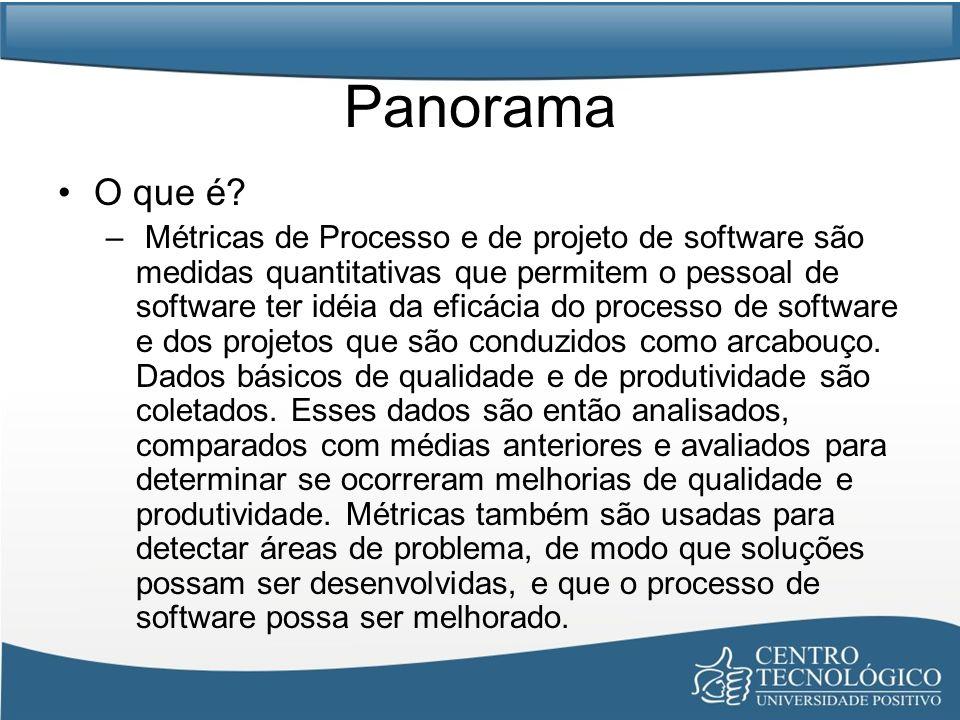 Panorama O que é? – Métricas de Processo e de projeto de software são medidas quantitativas que permitem o pessoal de software ter idéia da eficácia d