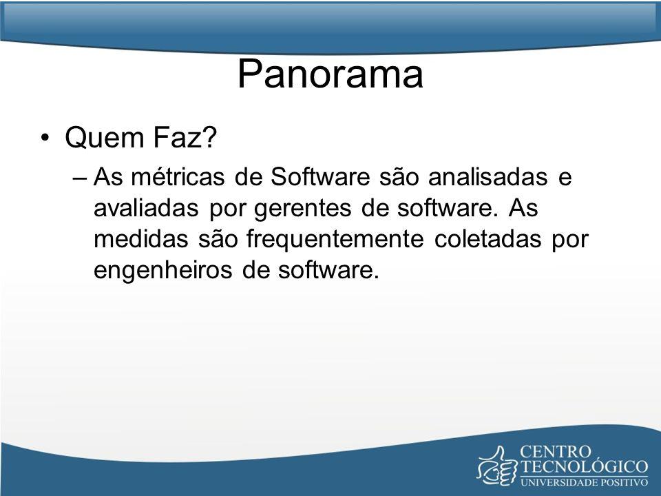 Panorama Quem Faz? –As métricas de Software são analisadas e avaliadas por gerentes de software. As medidas são frequentemente coletadas por engenheir
