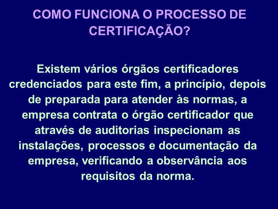 Existem vários órgãos certificadores credenciados para este fim, a princípio, depois de preparada para atender às normas, a empresa contrata o órgão c
