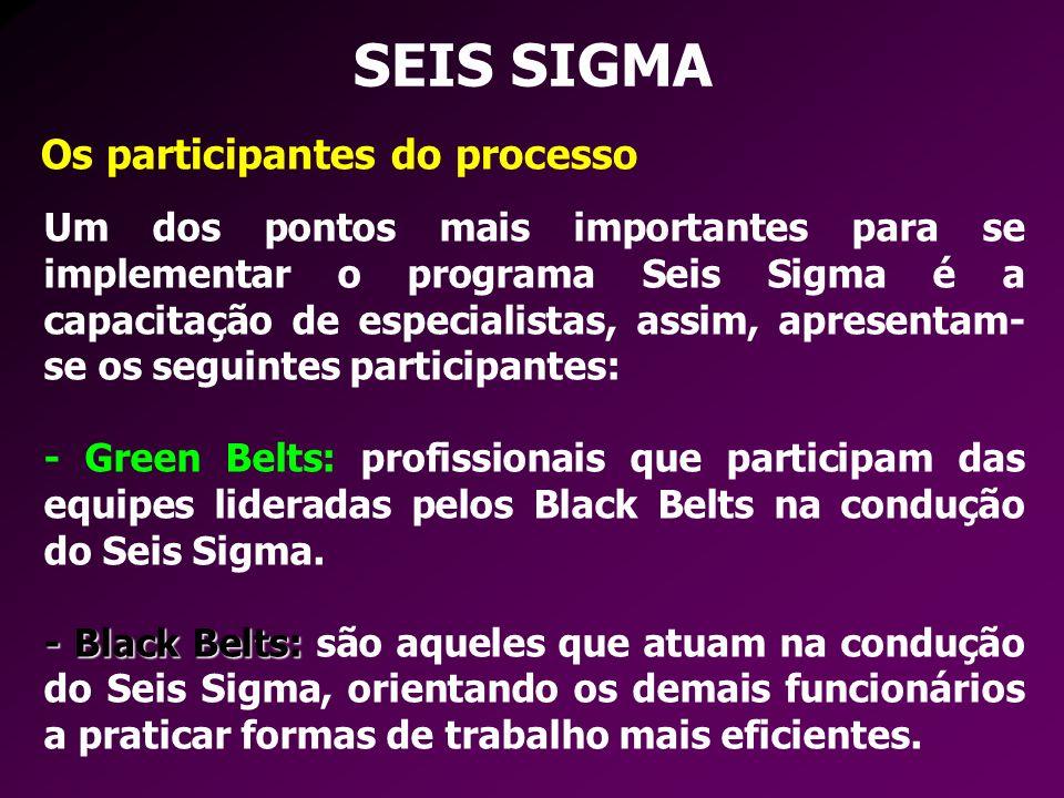 SEIS SIGMA Os participantes do processo Um dos pontos mais importantes para se implementar o programa Seis Sigma é a capacitação de especialistas, ass